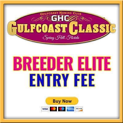Breeder Elite Entry B