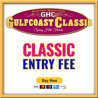 Classic Entry Fee
