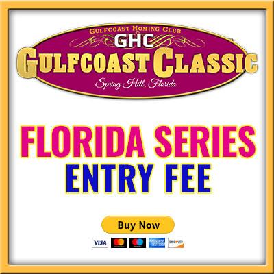 Florida Series Entry