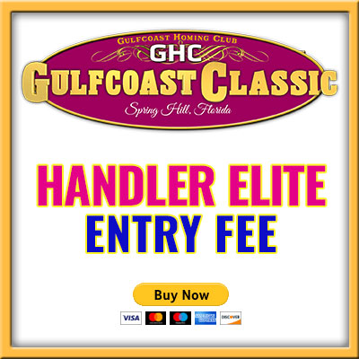 Handler Elite Entry